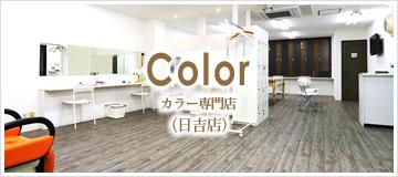 Color カラー専門店(日吉店)